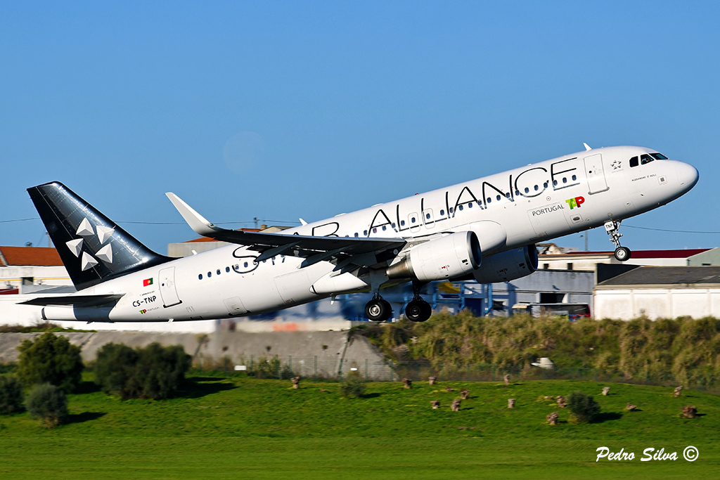CS-TNP A320 TAP star alliance_2_1024.jpg